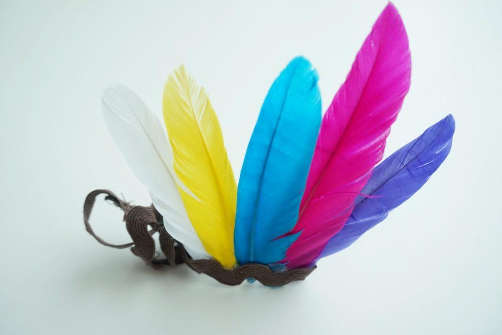 Cinta de plumas para la cabeza